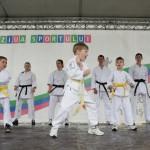 Demonstratie de karate la Ziua Sportului
